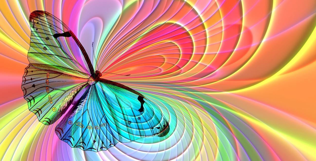 arrangement-2772438_1280 farfalla